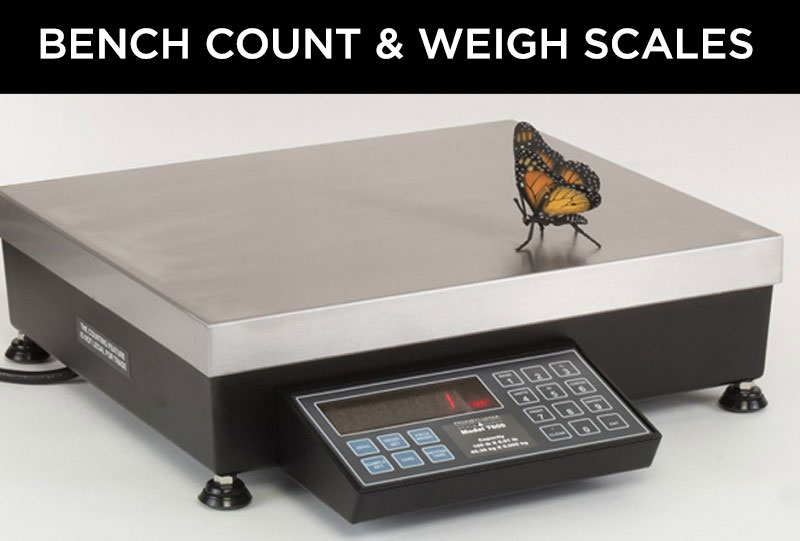 PA-Scale-Bench-Scales